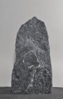 Maggia  MA16474