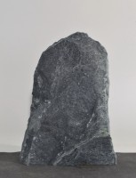 Tauerngrün  TG15755